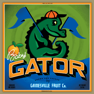 Baby Boy Gator by Gainesville Fruit Company