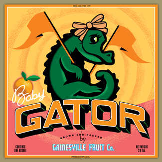 Baby Girl Gator by Gainesville Fruit Company